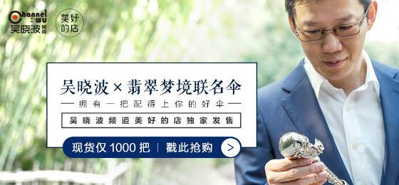 吴晓波频道巴九灵文化