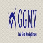 GaiaX Global Marketing Ventures